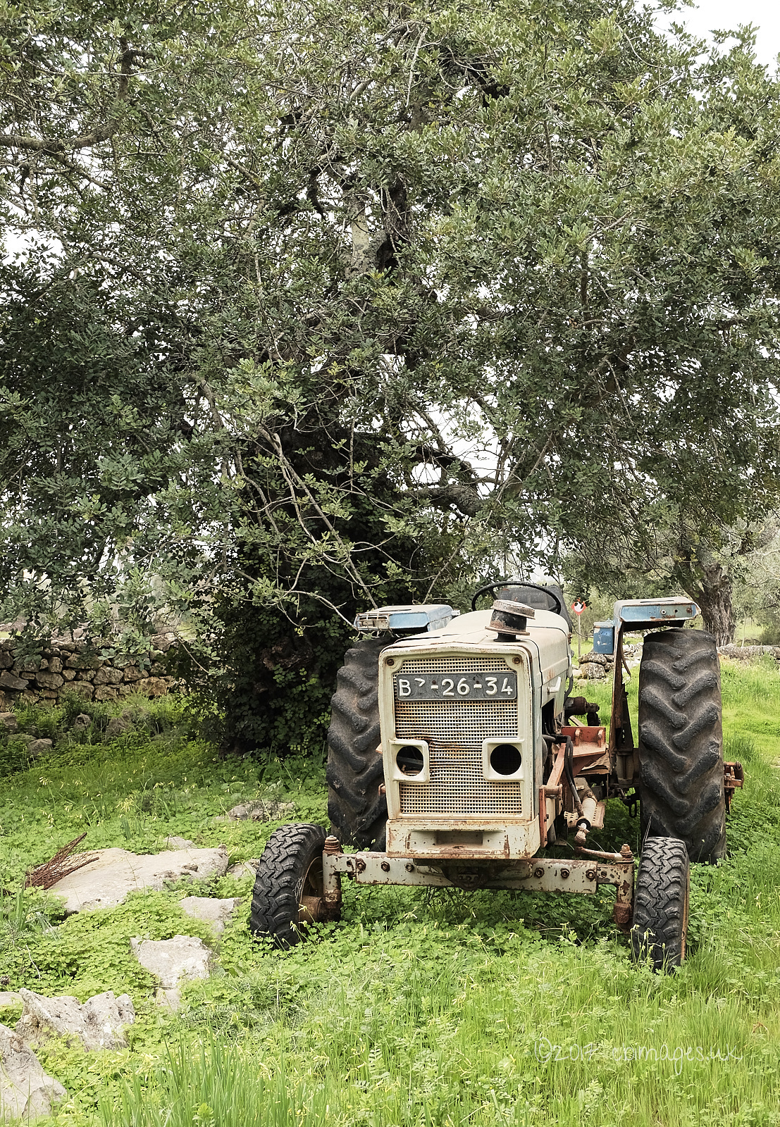 Old tractor in grass