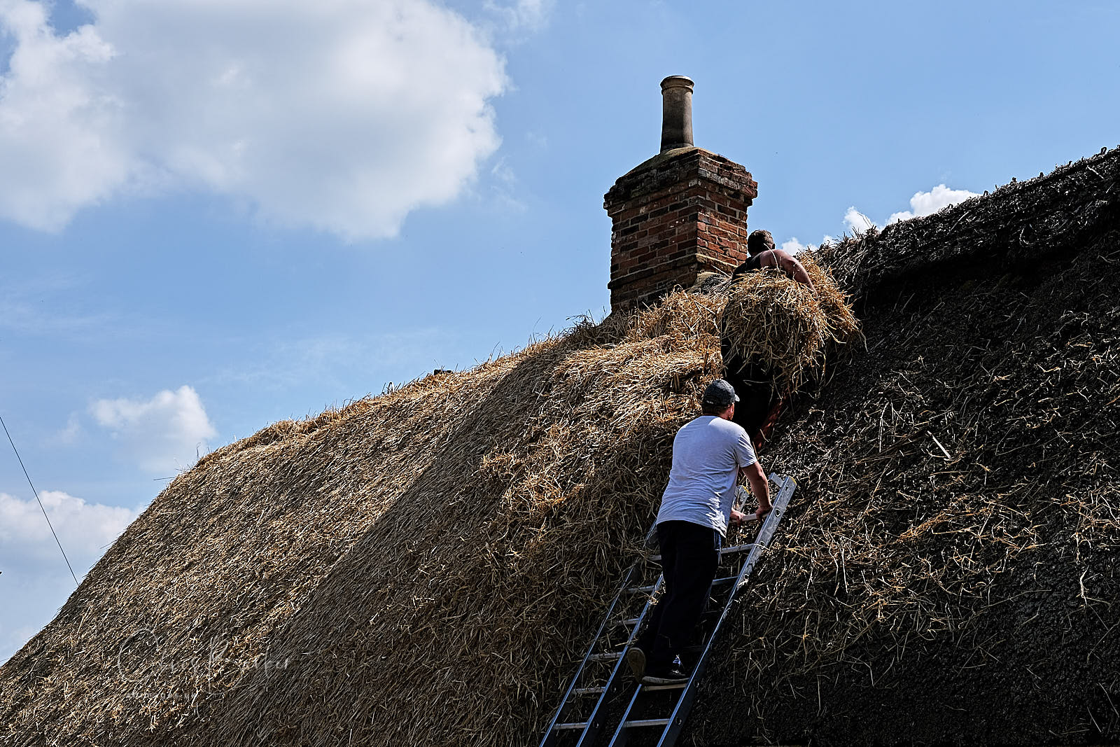 Two men on a roof with reeds for thatching